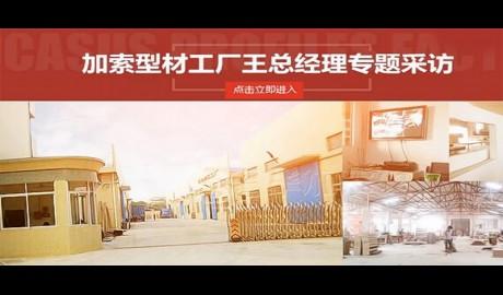 毕加加索型材工厂王总经理专题采访